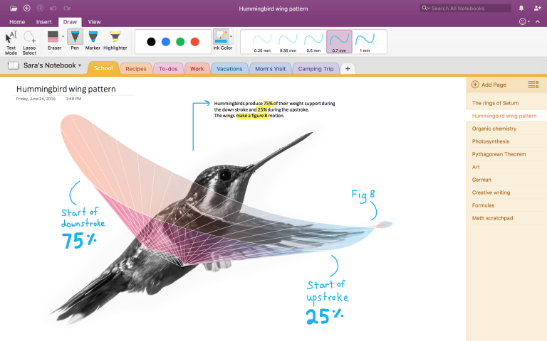 hummingbird-screenshot-768x480